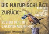 Galeriehaus Hof, Die Natur schlägt zurück, Ausstellung von Thomas Guggemos