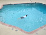 アリゾナ行ってきました。暑くて毎日プール入ってました~