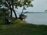 Abkühlung im Schweriner See