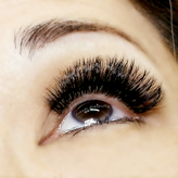 Lash Beauty