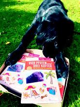 Hoover mit seinen Büchern