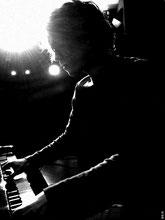 Musiciens chanteurs pour concert privé, animation, repas, réception, cocktail, mariage • Morbihan Sarthe Eure et Loir Loiret Vendée Loire Atlantique