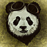 Pandariños deutsche Gruppenliste Telegram Avatar