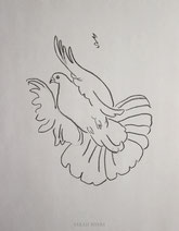 Soaring Pigeon, line drawing by Sarah Myers