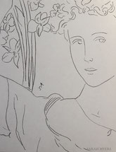 Inca Lilies, line drawing by Sarah Myers
