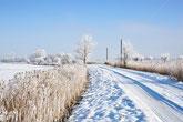 Schneebedeckte Winterlandschaft Ostfriesland