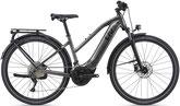 XXL e-Bike Liv Amiti-E+ 1