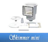 Skimmer Mini Neptun Astral ABS Bauteile Einbauteile Pool Schwimmbecken