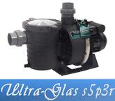 Link Sta-Rite Ultra-Glas S5P3R Filterpumpe Poolpumpe Pentair