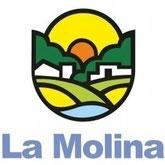 FACE MOLINA