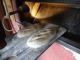 Deux pains au sésame prêt à entrer au four
