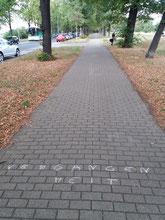 Kurt Vonnegut Tour Dresden