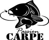 pêche carpe maïs