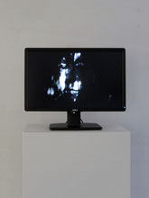 Interna, 2014  Installation, Monitor im Querformat