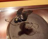 Der Gewinn: ein Magnet-Käfer auf der Herdplatte