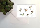 N°28 oiseaux multi