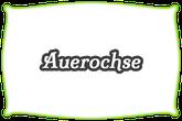 Auerochse | Rinderrasse | Mein BioRind