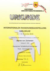 Barrex Urkunde Schau Karlsruhe