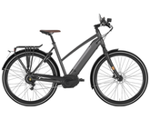 Gazelle Cityzen Speed 380