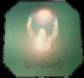 Energieplatte Quick Duplex, Qi Quant