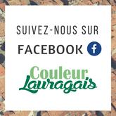 Suivez le Facebook de Couleur Lauragais