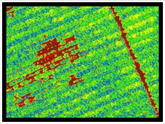 Precision agriculture utilises drones for identifying plant health, managing fertilizer and planning irrigation schedules.