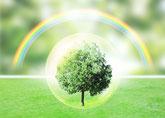 ヒプノセラピー(催眠療法)未来世療法の説明