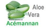 Acemanann undes principe actif les plus utilisé de l'aloe vera ! AloeVeraSante.net : LR Health & Beauty La liste des vitamines, minéraux, enzymes et acides aminés ressemble à un dictionnaire de la nutrition. Jadis, l'Aloès entrait dans la composition de