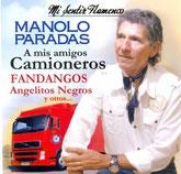 Mi sentir flamenco