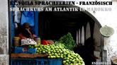 2022 Energie geladen starten am Atlanik | Französisch Sprachferien