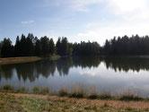Fennberg See