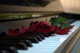 Akkordeon, Keyboard, Klavier, E-Piano