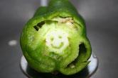 Le charmant sourire de Mr Poivron
