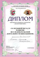 Диплом окружного конкурса проектов (март 2008 г.)