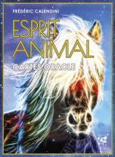 Esprit animal, Pierres de Lumière, tarots, lithothérpie, bien-être, ésotérisme
