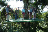 Combo:  Canopy Tour & Arenal Hanging Bridges