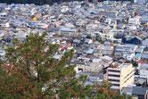 展望台からの杉山箪笥店