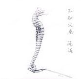 """不知火庵×泥流「スプリット シングル」Iori Shiranui & Dale Stromberg """"split single"""""""