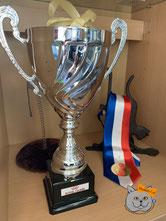 Coupe du BEST of BEST à Paris Porte de Versailles
