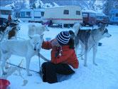 Yukons Loch für Frauchen