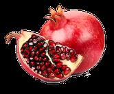Fruchtliquid online bestellen, Granatapfel selbst mischen, Granatapfel Herkunft