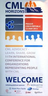 CML Horizons 2013 lmc france CML Advocacy leucemie myeloide chronique