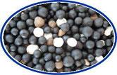アミノ酸入りBB14-6-5