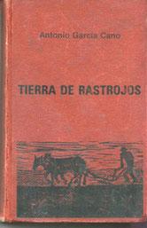 Obra cumbre de García Cano