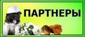 выставка-декоративных-животных