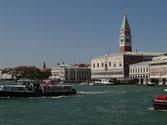 Venedig mit Hund - Traveldog - fair4world