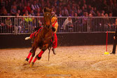 Nacht der Pferde, Hannover  6.12.13