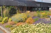 Jardin écologique de l'écopôle - Concarneau (29)