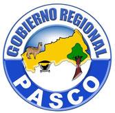 Web Gobierno Regional de Pasco