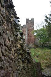 Kasimir, Cäsar, Fredi und Kerl besuchen William the Conqueror's Castle